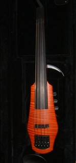Steinberger Five String Electric Violin